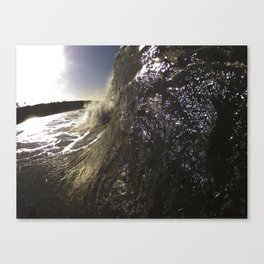 Walling Up Canvas Print
