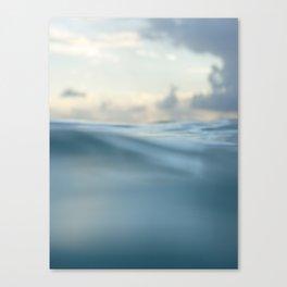 Tropisea Canvas Print
