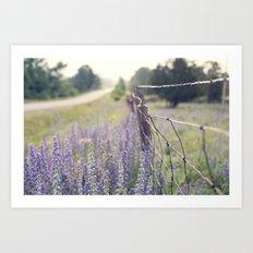 Lavender road Art Print