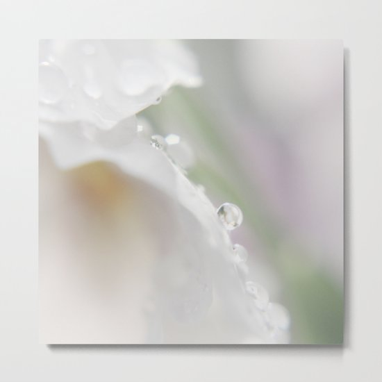 Tiny pearls Metal Print