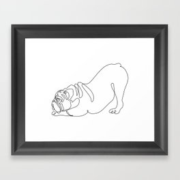 One line English Bulldog Downward Dog Framed Art Print