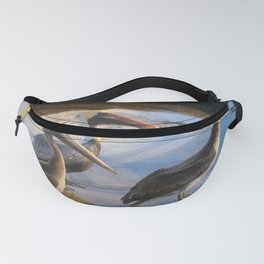 Three Begging Pelicans Fanny Pack