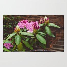 Brooklyn Heights Blooms Rug