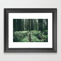 Happy Trails XII Framed Art Print