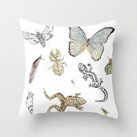 insects Throw Pillows featuring Insects by Claire Bond
