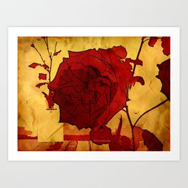 2nd Place Rose - 024 Art Print