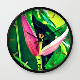 Banana Flower (Musa velutina) Wall Clock