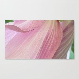 Spring CloseUp Canvas Print