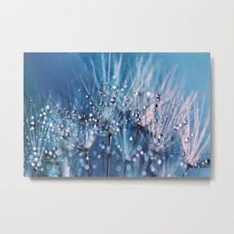 Dew on dandelions Metal Print