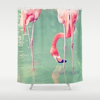 flamingos Shower Curtains featuring Flamingos  by Laura Ruth