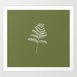 A Simple Fern Art Print