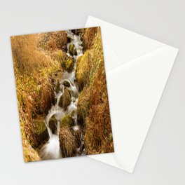 Places - Autumn in Dawyck Botanic Garden Scotland Stationery Cards