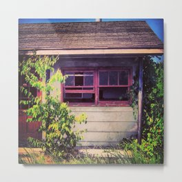 Windows & Vines Metal Print