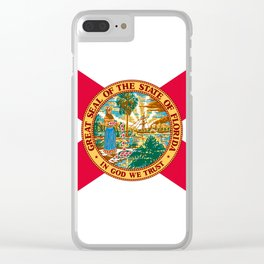 Flag of Florida Clear iPhone Case
