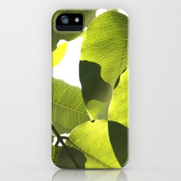 Close Up Leaves iPhone Case
