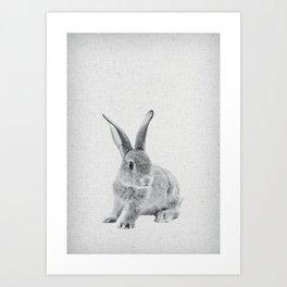 Rabbit 25 Art Print