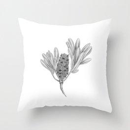 Banksia Integrifolia Botanical Illustration Throw Pillow