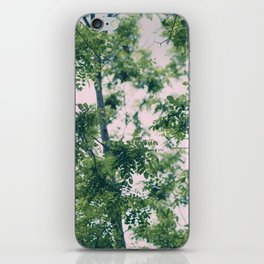 Spring Tree Branches iPhone Skin