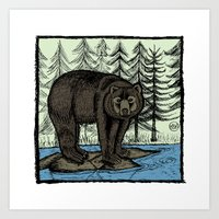 Bear - Colour Art Print