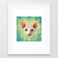 sphynx Framed Art Prints featuring Sphynx by Cassidy Dawn