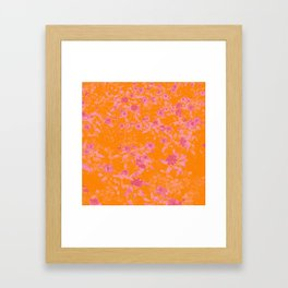 Floral trio tone photograph with orange and pinks Framed Art Print