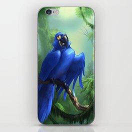 Moseley the Hyacinth Macaw iPhone Skin