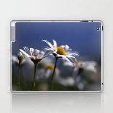 Daisies 3610 Laptop & iPad Skin