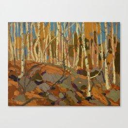 Tom Thomson Birches 1915 Canadian Landscape Artist Canvas Print