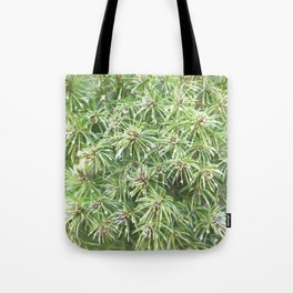 Spring Rain on Spruce Needles Tote Bag