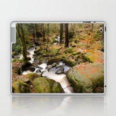 Wyming Brook Valley Laptop & iPad Skin