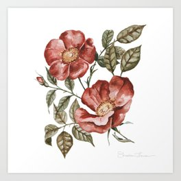 Red Floral Painting Art Print