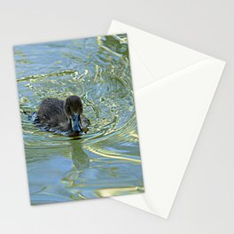 Little Black Duckling Swimming Stationery Cards