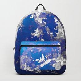 Ice Burst Backpack