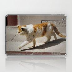 Mao Laptop & iPad Skin