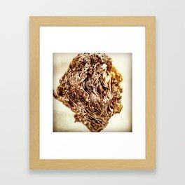 Absolom Framed Art Print