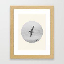 Pair of Birds Framed Art Print
