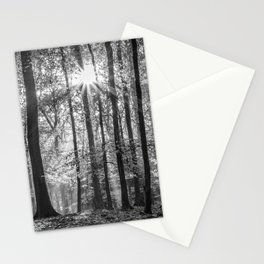 Beech Wood Sunrise Stationery Cards