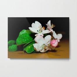 Cherry Blossum Metal Print