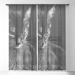 cat in black and wight Sheer Curtain