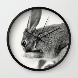 Rabbit Animal Photography Wall Clock