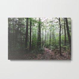 Yokun Ridge IV Metal Print