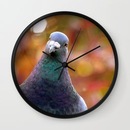 Curious Pigeon Wall Clock