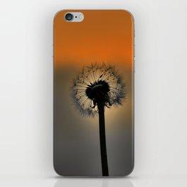 Dandelion Sunset landscape v3 iPhone Skin