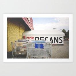 pecans Art Print