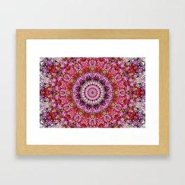 Pink and Red Petunias Mandala Framed Art Print