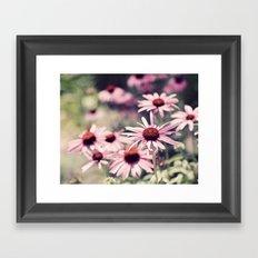 Sweet Daisies Framed Art Print