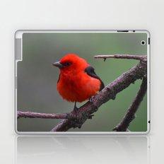 Scarlet Tanager - A Nature Art Print Laptop & iPad Skin
