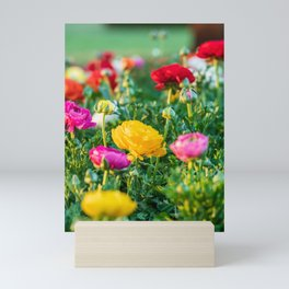 Yellow floribunda bush rose Mini Art Print