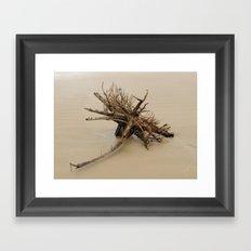 After the Rain 4 Framed Art Print