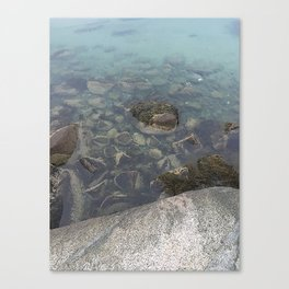 Wading In Canvas Print